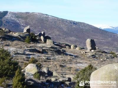 Senderismo Sierra de la Cabrera; madera tejo; ruta de senderismo madrid